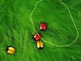 Hra - 2 Many Bugs