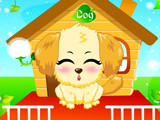 Hra - Cute pet dog
