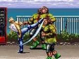 Hra - Karate Blazers