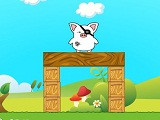 Piggy landing