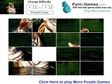 Hra - Tiger Slider Puzzle Game